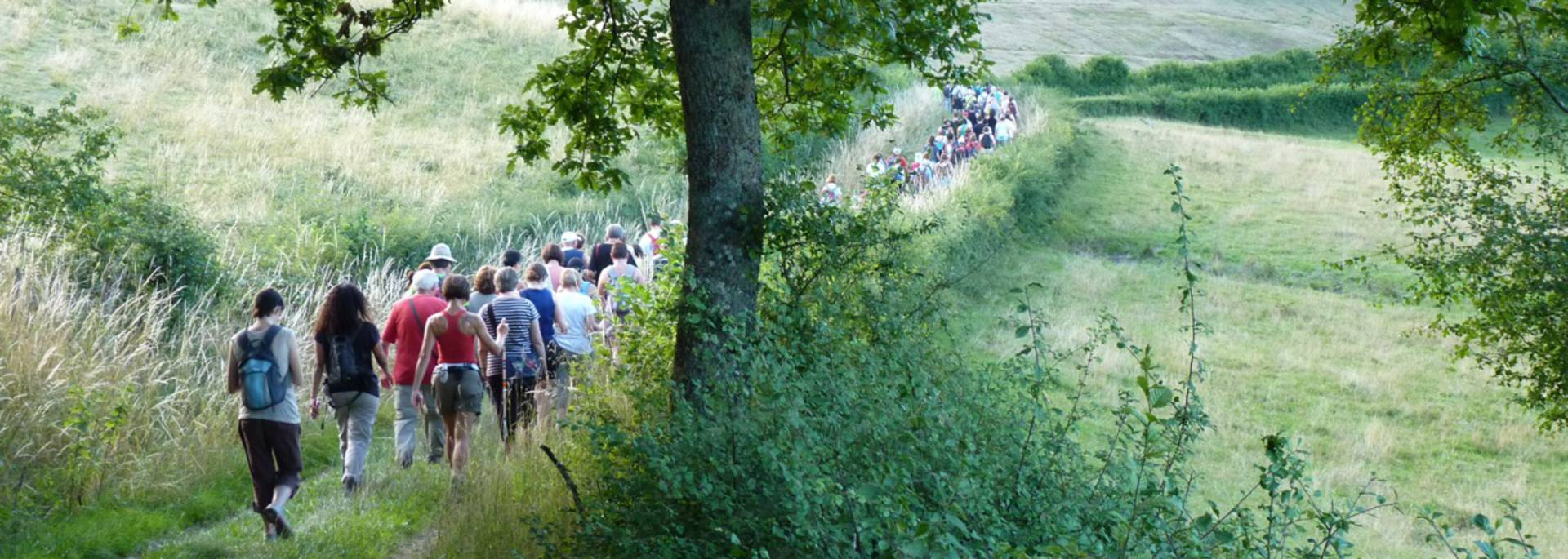 Randonnées à Saint-Sernin-du-Bois. © Gilbert Brochot.