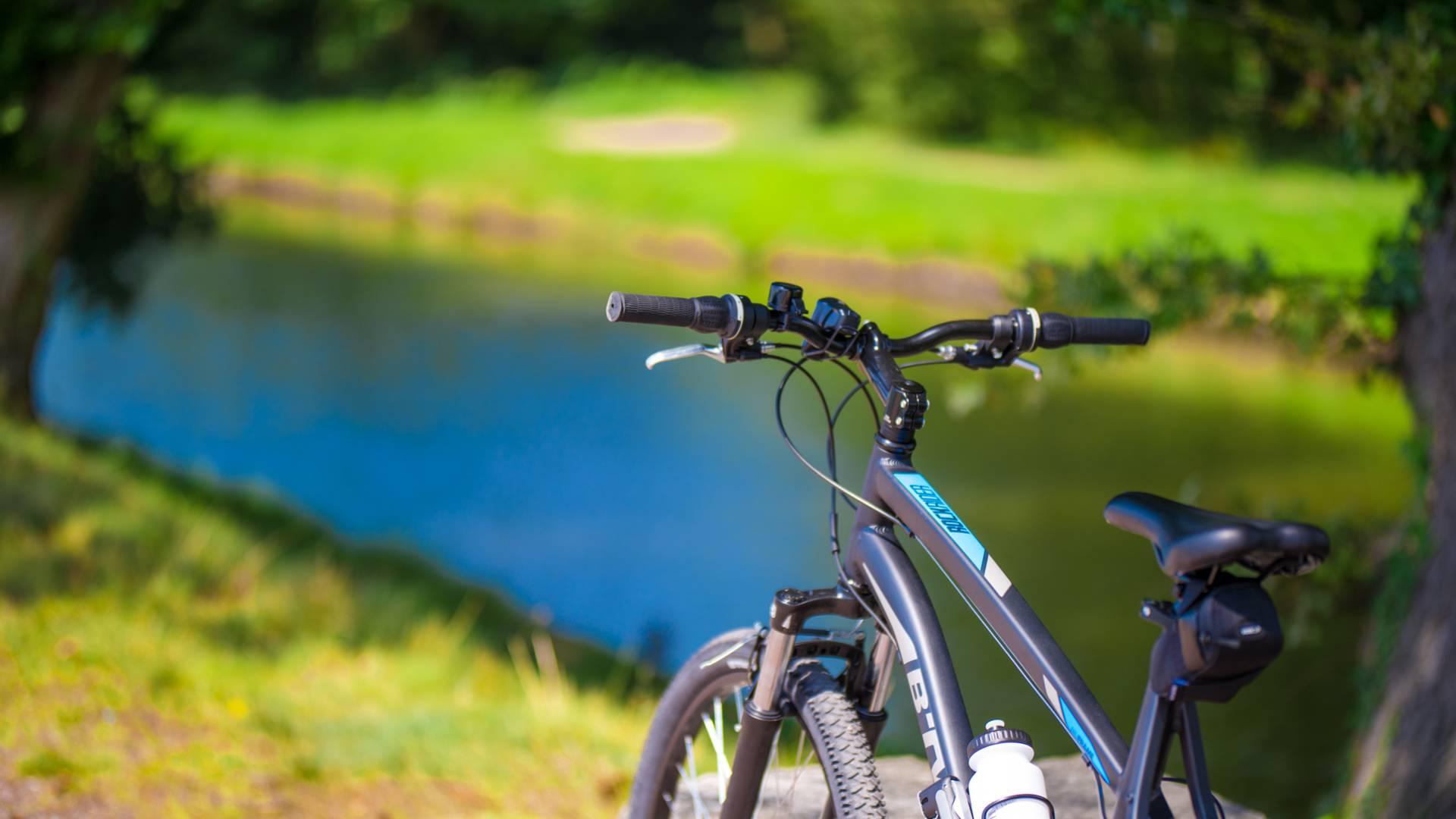 Le long du canal à vélo, Montchanin. © Franck Juillot.