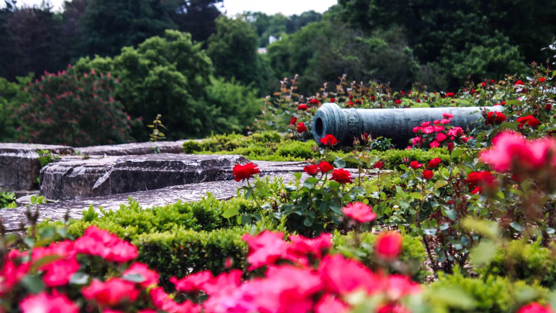 Détail des terrasses du parc de la Verrerie, Le Creusot. © Lesley Williamson.