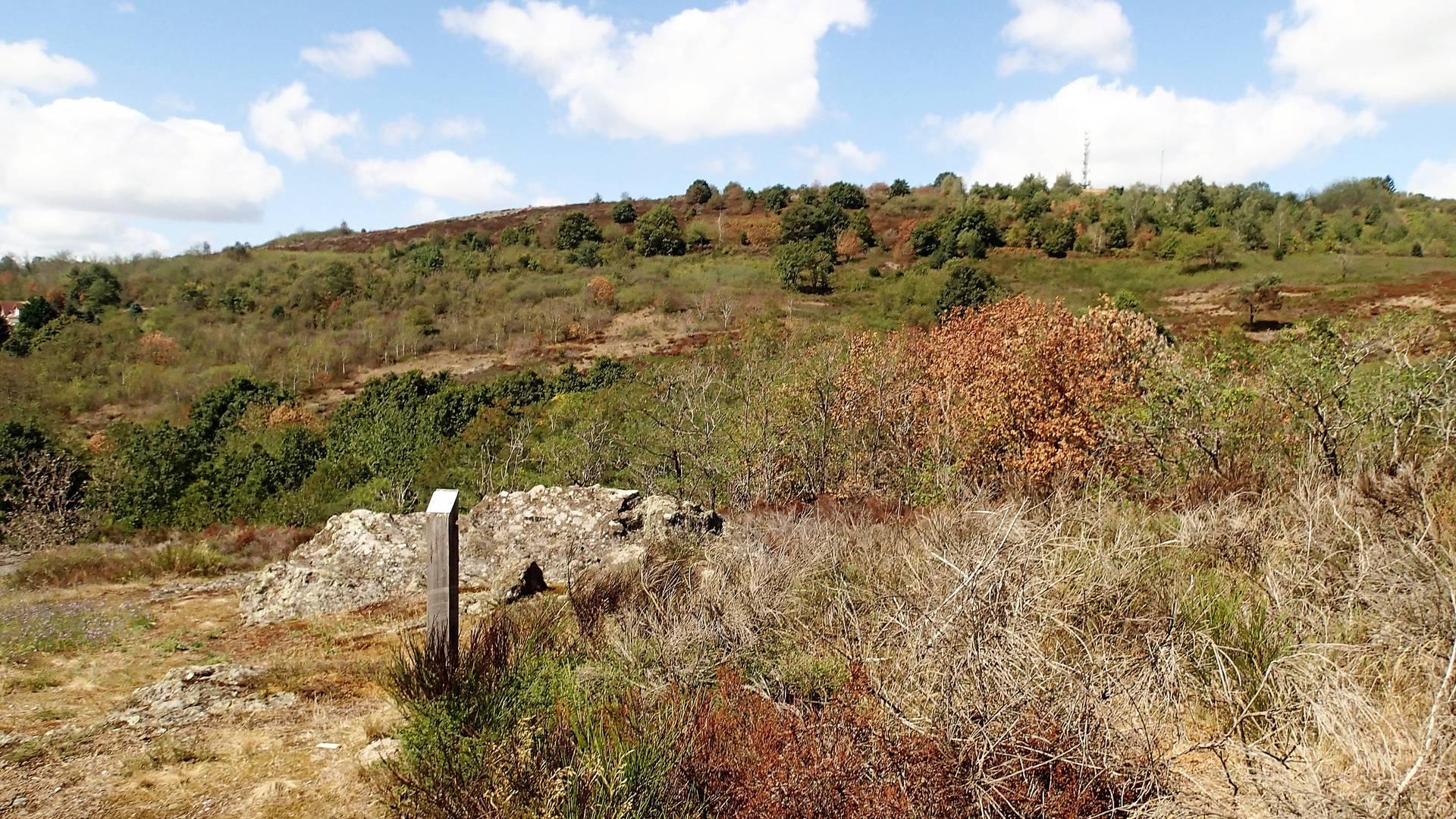 La lande de la Chaume, Le Creusot. © CEN Bourgogne.