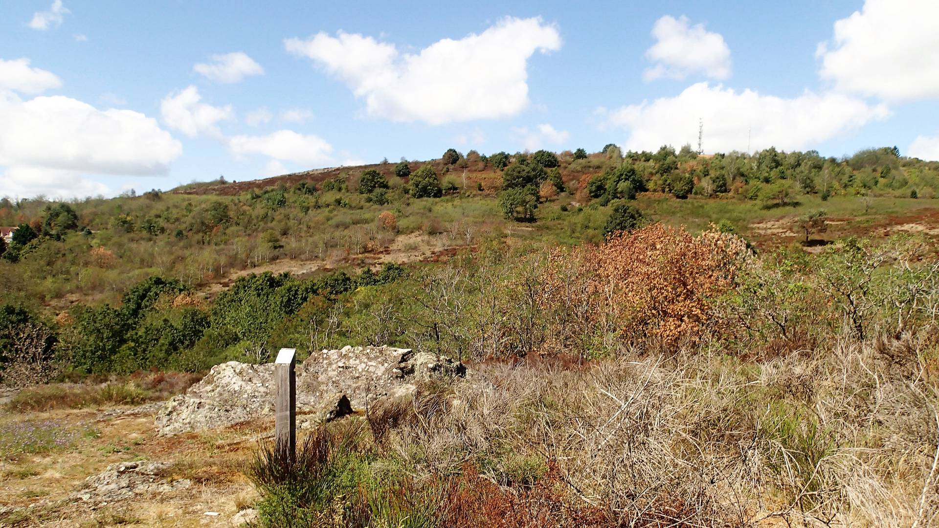La lande de la Chaume, Le Creusot. © Conservatoire d'Espaces Naturels de Bourgogne.