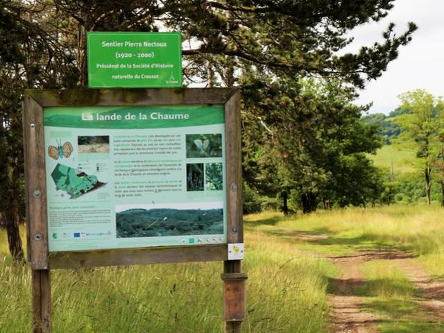 Départ du sentier de la lande de la Chaume, Le Creusot. © Conservatoire d'Espaces Naturels de Bourgogne.