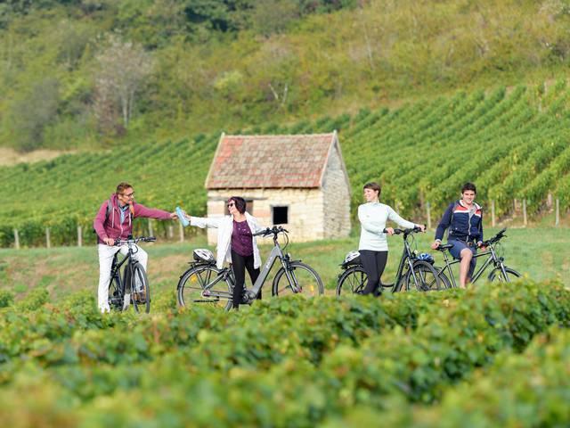 En se promenant dans le vignoble de la Côte Chalonnaise. © Destination Saône-et-Loire, Michel Joly.
