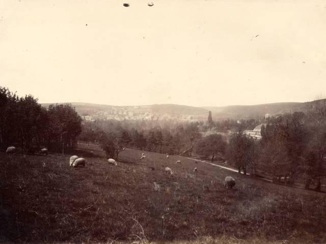 Vue générale du parc de la Verrerie, Le Creusot, en 1881. © CUCM, document Écomusée, reproduction D. Busseuil.