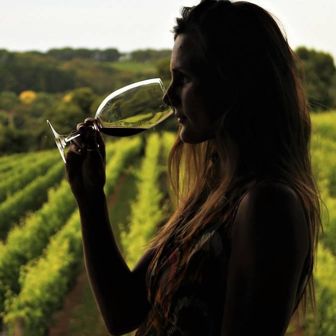 Dégustation de vin en Côte Chalonnaise. © Lesley Williamson.